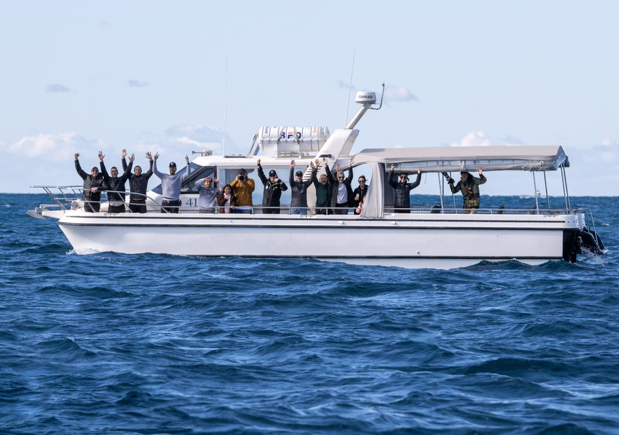 Whale Watching CRUISE onboard Ocean Explorer (Circular Quay)
