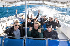 Private Whale Watching Tour on Ocean Explorer