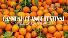 Gayndah Orange Festival - Day Tour