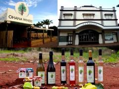 Childers Full Day - Paragon Theatre and Ohana Winery & Exotic Fruits