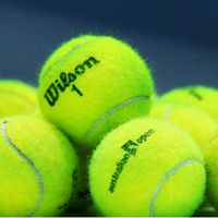 3 Day Brisbane International Tennis - Extended Tour (Departs 05/01/18)