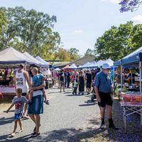 Calliope Markets - Day Tour
