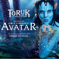 Cirque Du Soleil: TORUK Day Tour