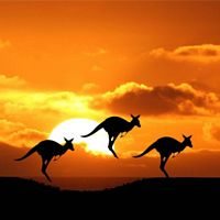 41 Day Great Australian Tour: WA - Nullarbor - Canberra - Extended Tour (Departs 22/08/2016)
