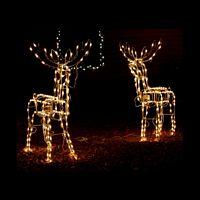 Maryborough Christmas Lights - Evening Tour