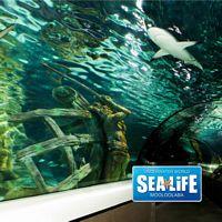 Underwater World - Day Tour