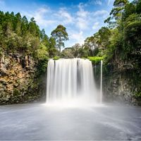 8 Day Waterfall Way Christmas Tour (Departs 20/12/2017)