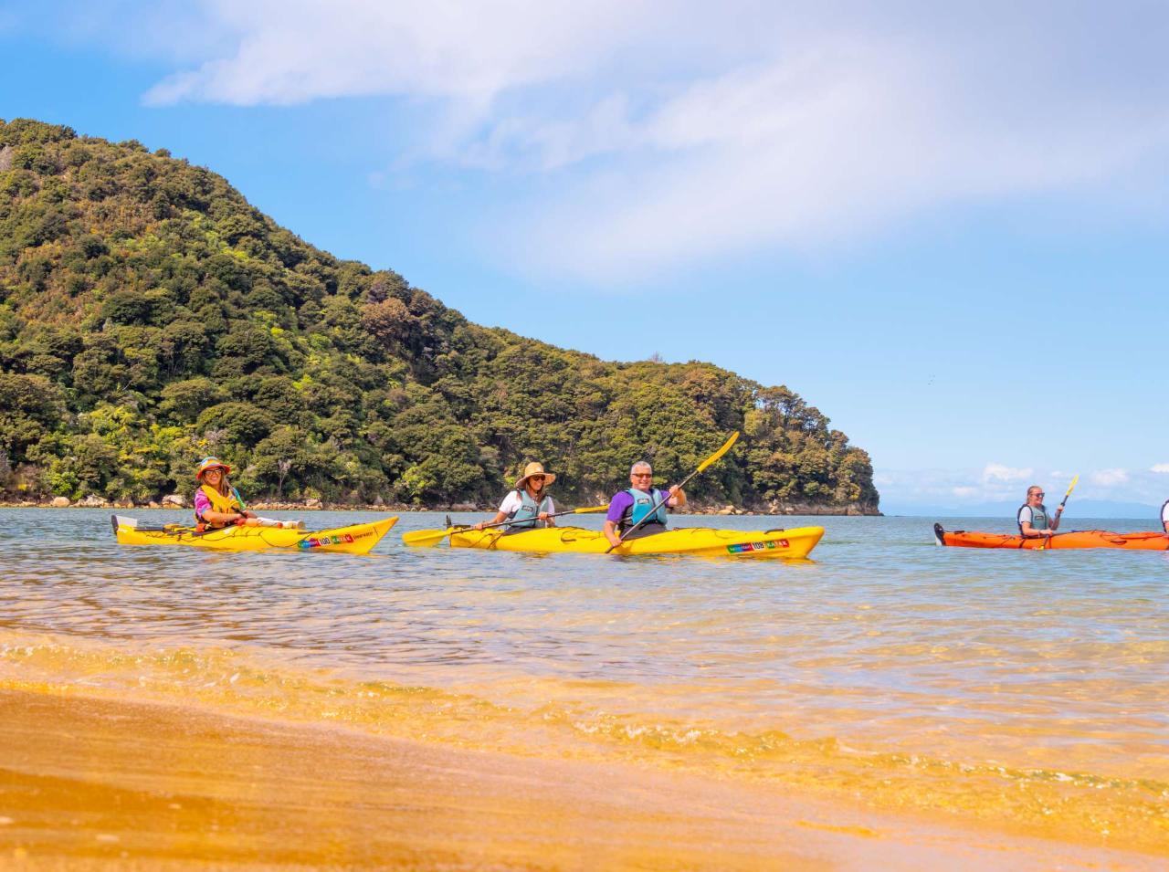 Kayak Awaroa Full Day Guided Kayak Tour