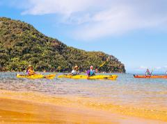 Kayak Awaroa Full Day Guided Kayak Tour