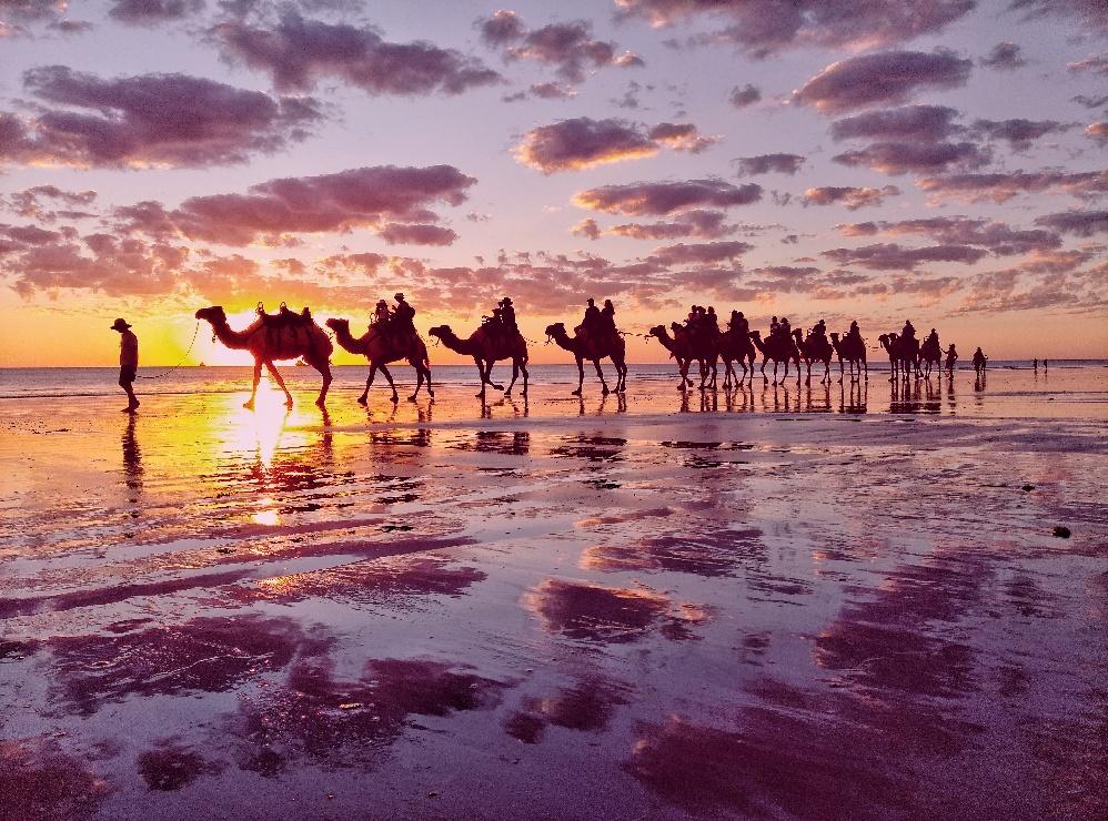 Pre-sunset Sundowner Camel Tour