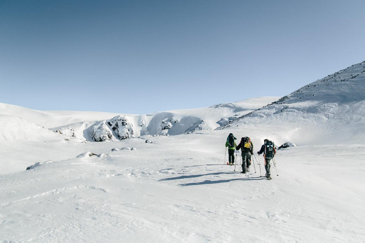 Alpine Navigation