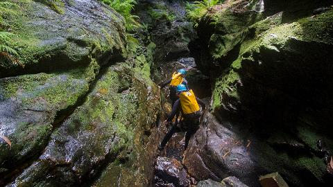 Canyoning - Intermediate - Bowen's Creek Canyon