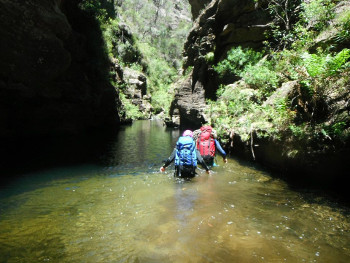 Canyoning - Introductory - Wollangambe Canyon