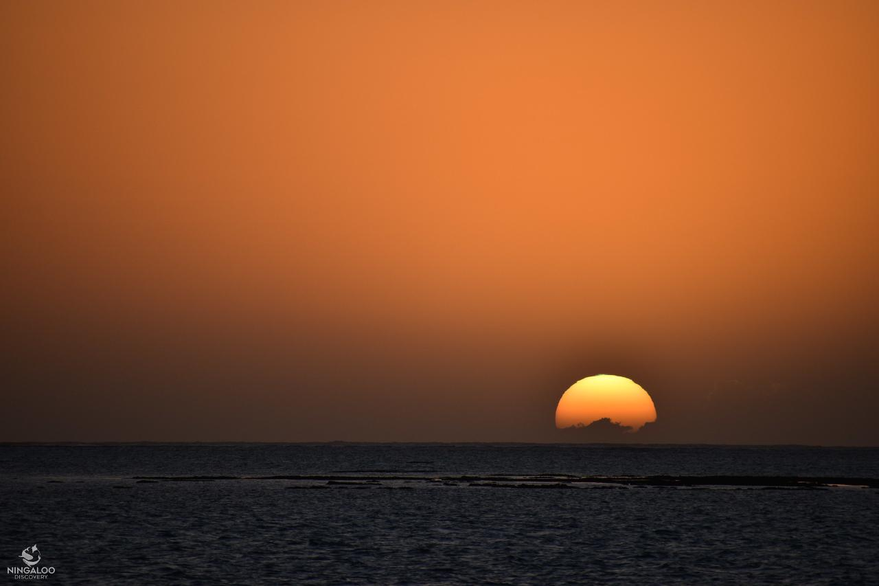Ningaloo Reef Sunset Sails