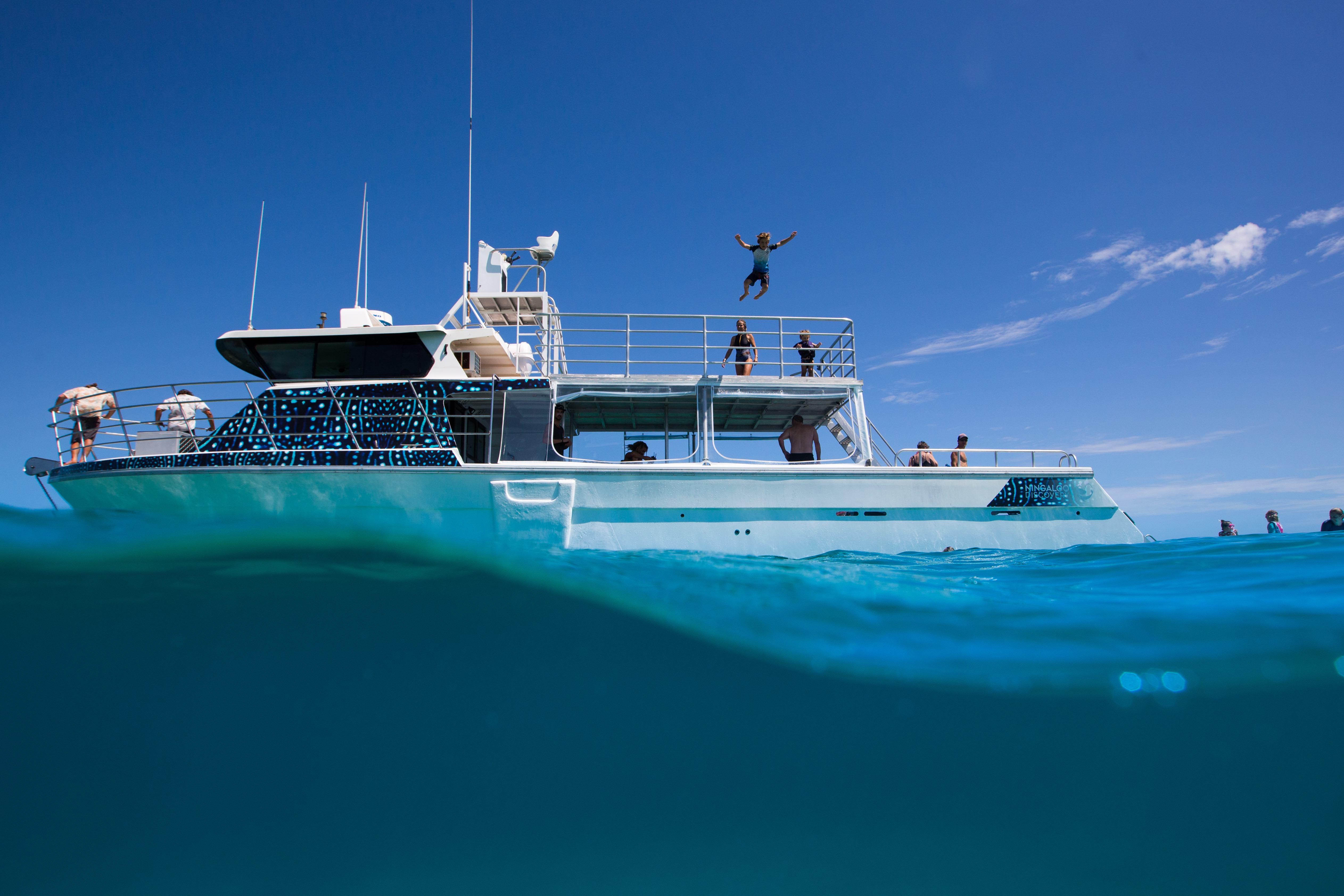 Ningaloo Whale Shark Swim on a Powerboat**