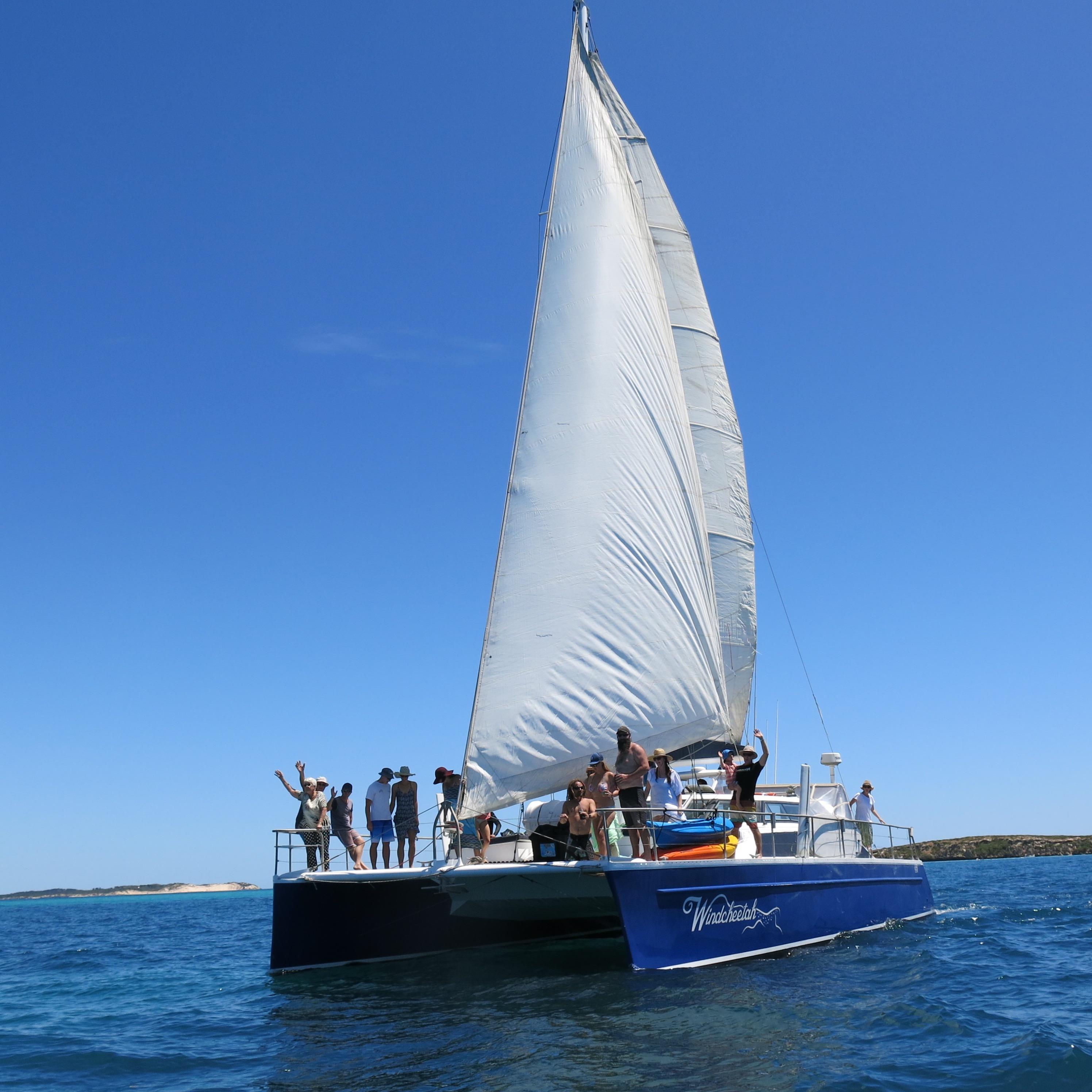 Ningaloo Humpback Whale Swim on a Sailing Catamaran