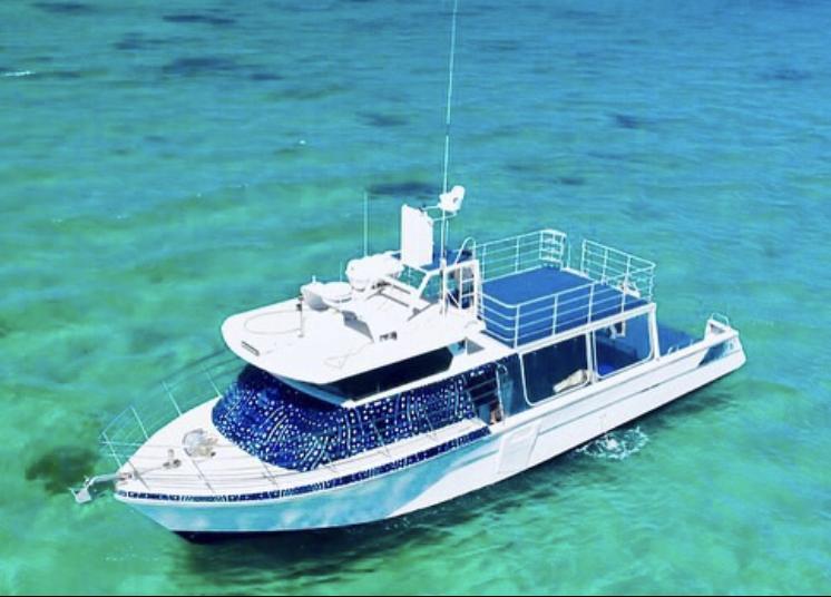Ningaloo Whale Shark Swim & Eco Tour on a Powerboat (shoulder season)