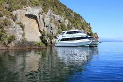 Daily Scenic Cruise to the Maori Rock Carvings 10.30am