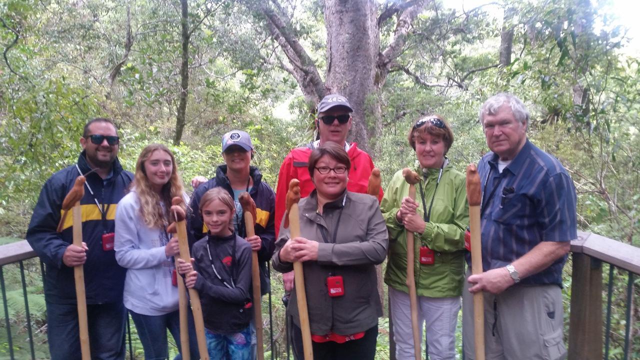 Combo - Kauri Forest Walk & Waterfall Discovery Kayak Tour