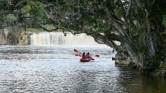 Haruru Falls Half Day