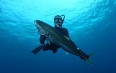 Spearfishing trip