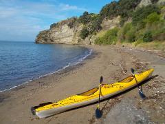 Browns Island (Motukorea) Half Day Kayak Tour
