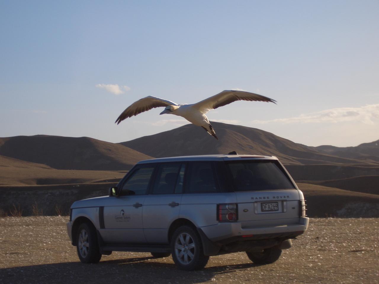 Private Tour - Range Rover