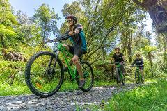 Full Day Mountain Bike Hire