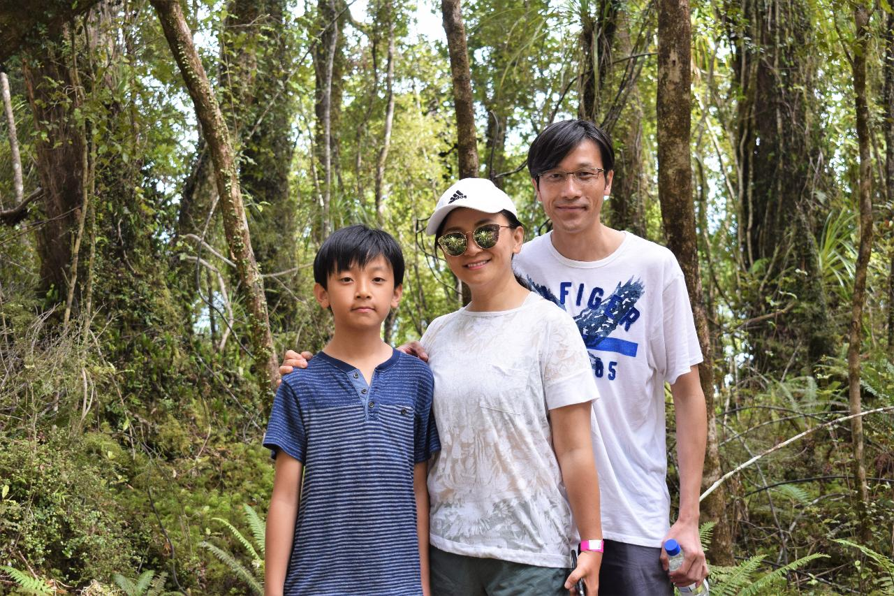 Cruise & Rainforest Walk