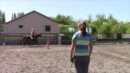1 Hour 1 on 1 riding lesson
