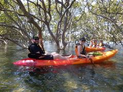 Sands Of Huskisson Guided Sit On Top Kayak Tour
