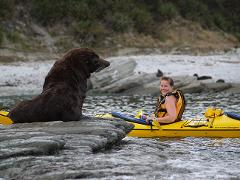 Guided Wildlife Kayaking Experience