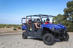 Sunset Kangaroo Safari - Passenger