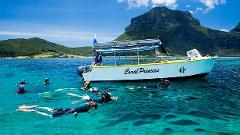 Ultimate Snorkelling