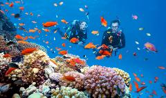 SSI Open Water Diver - 3  day course