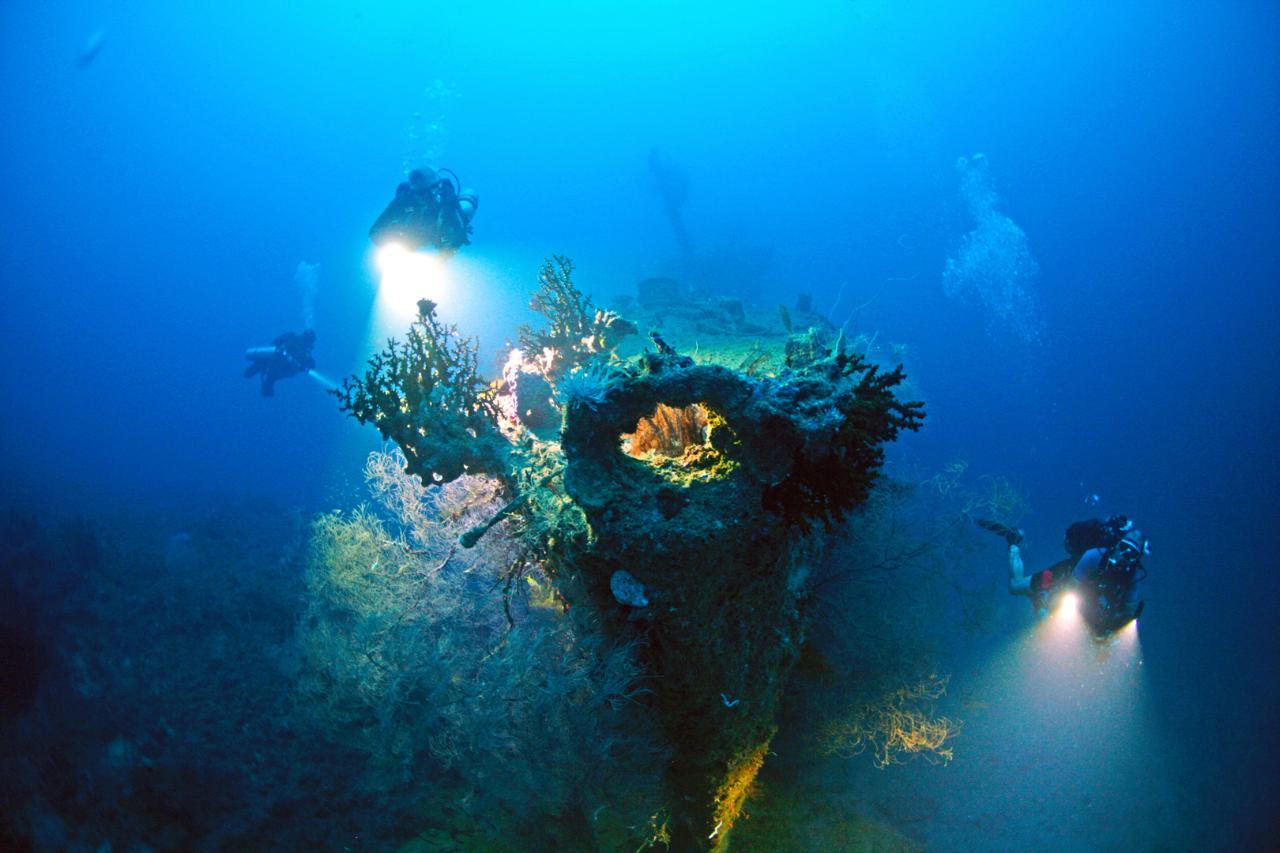 Solomon Islands 10 day Dive Tour