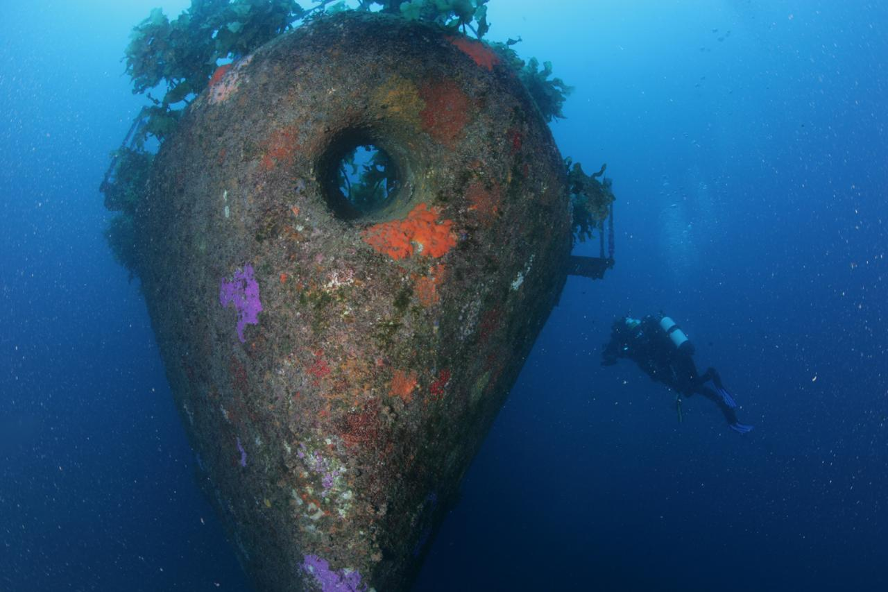 Wreck Weekend Dive Tour