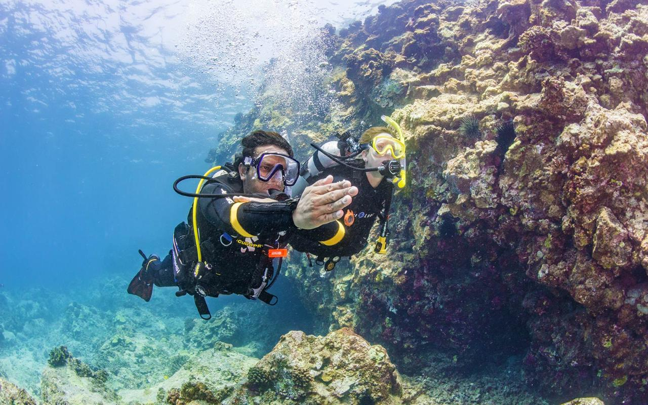 Padi advanced open water diver new zealand diving reservations padi advanced open water diver fandeluxe Choice Image