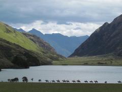 Moke Lake Trek