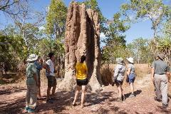 Kakadu, Nitmiluk & Litchfield - Family 7 day walking tour