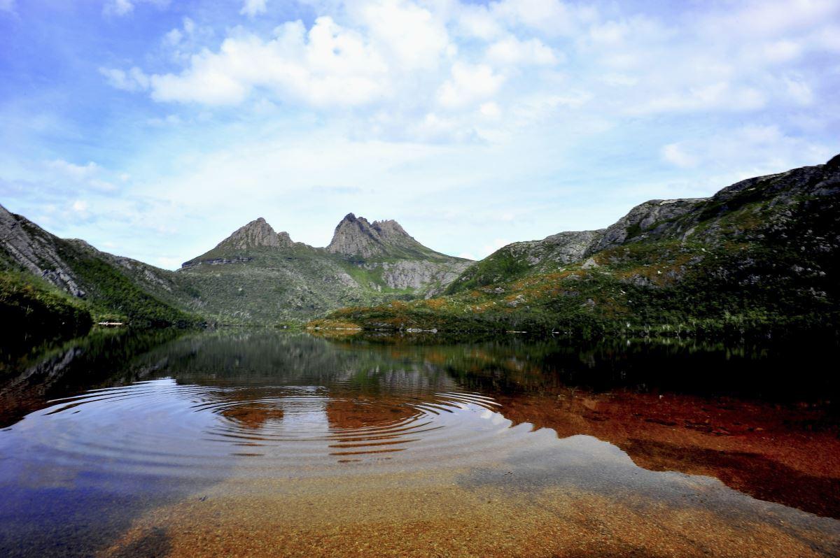Tarkine and Cradle Mountain 5-day walking tour