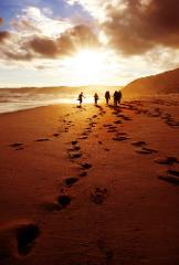 Great Ocean Walk 7 Day