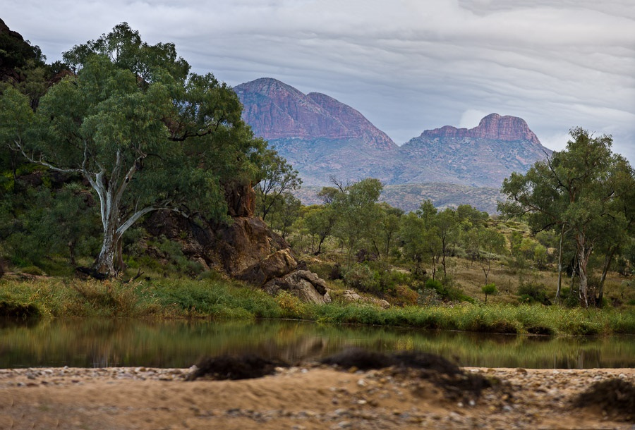 Larapinta & West MacDonnell Ranges