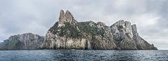 Three Capes and Tasman Peninsula Walking Tour