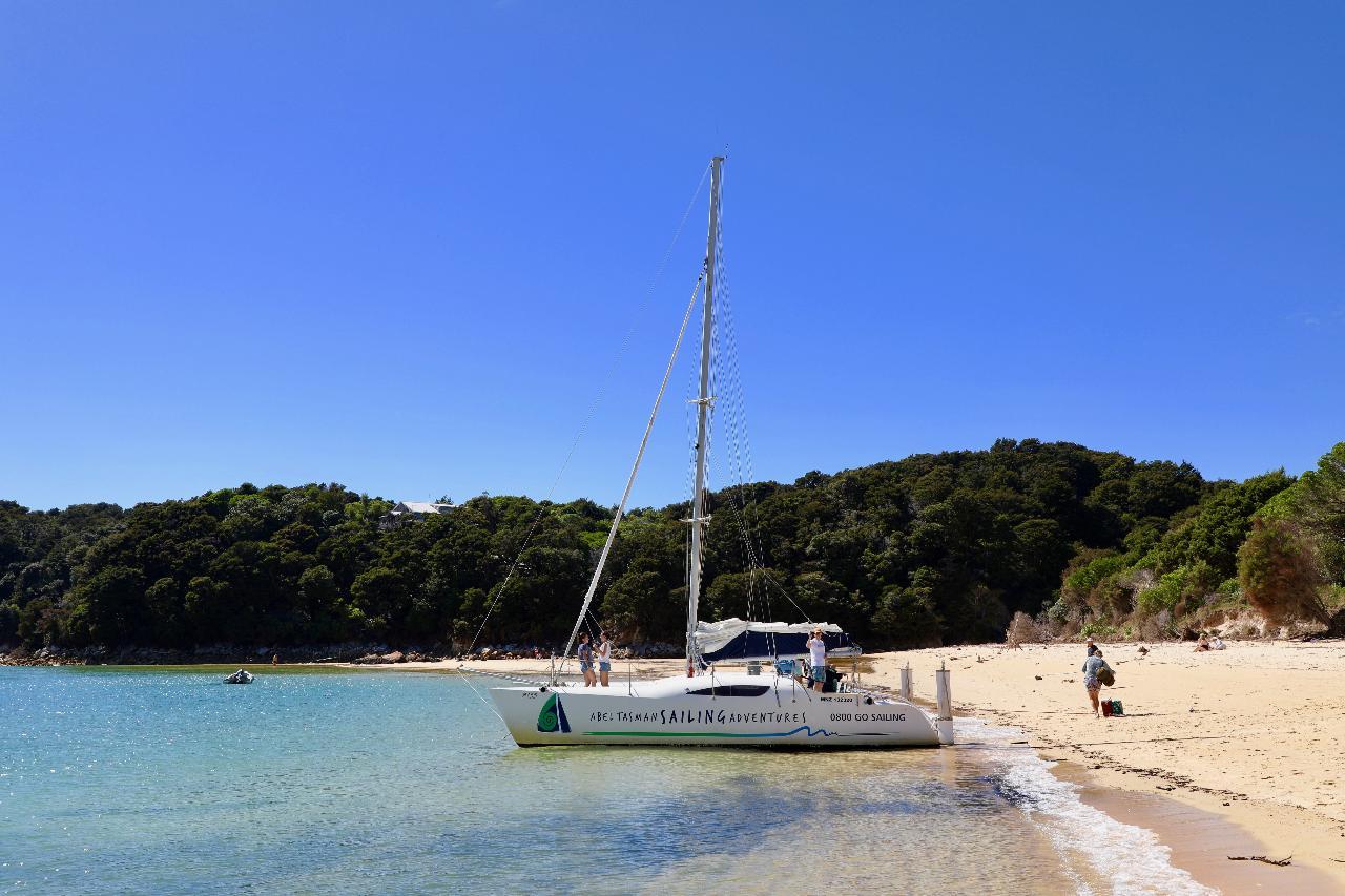 Awaroa Sail & Cruise - Morning