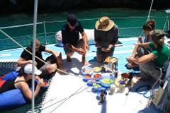 Fishing Fun Cruise