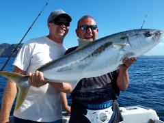 6 hour Kingfish
