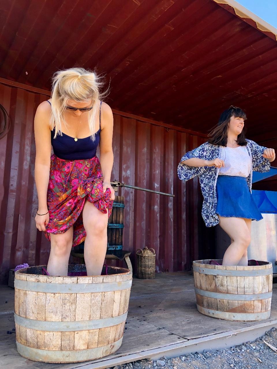 Grape Stomping Griffith
