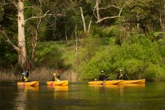 Paddle with the Platypus Adventure