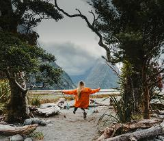Milford Sound Fly | Explore | Fly